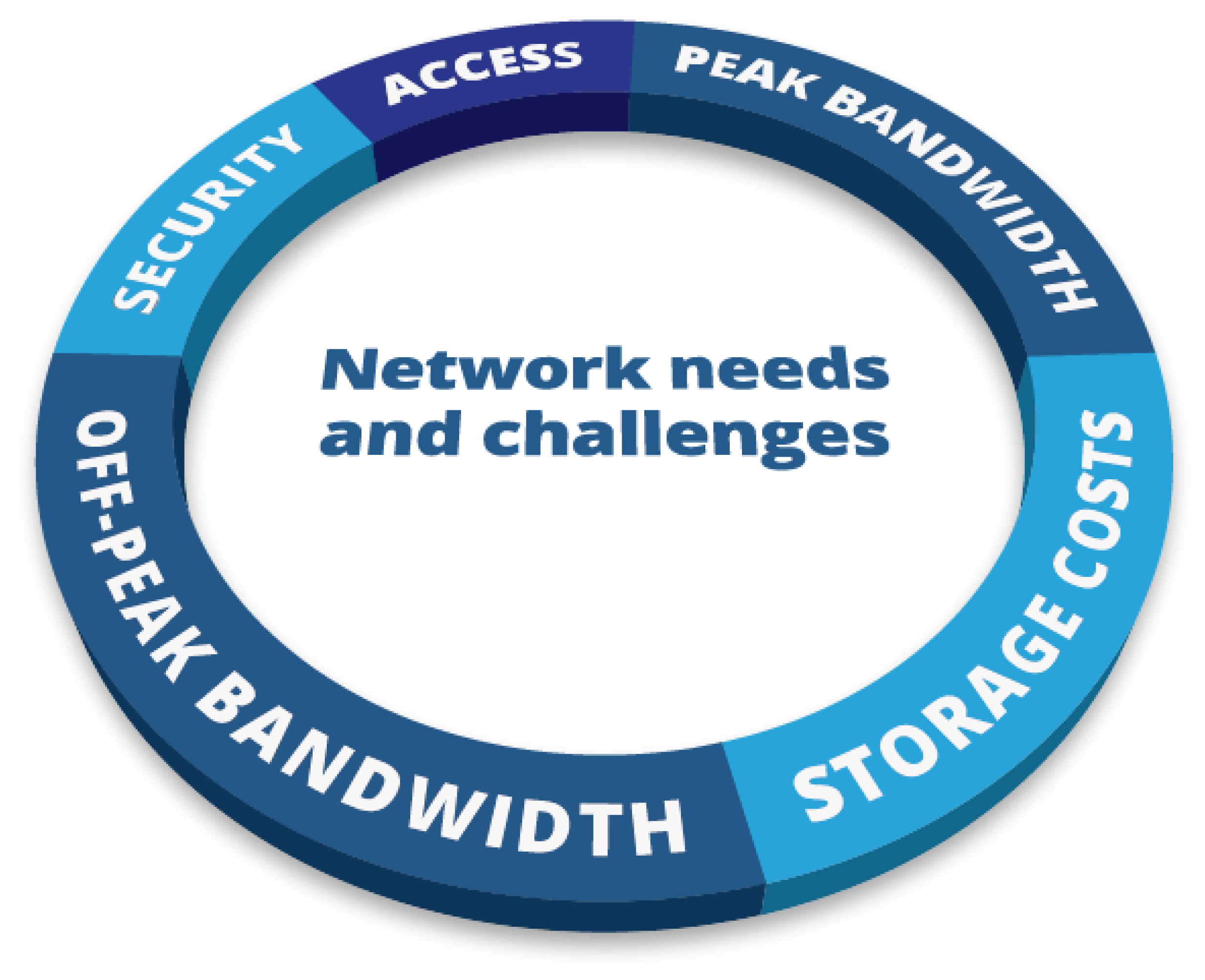 Network needs and challenges include: security, access, peak bandwidth, off-peak bandwidth and storage costs.